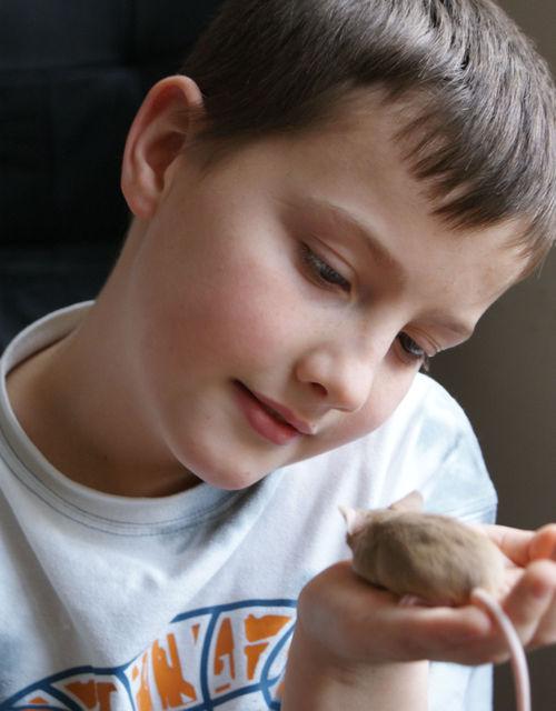 Tilted head mouse boy
