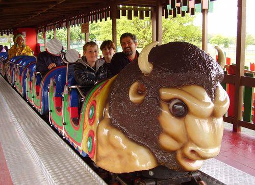 Buffalo rollercoaster web