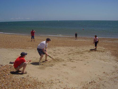 Beach cricket web