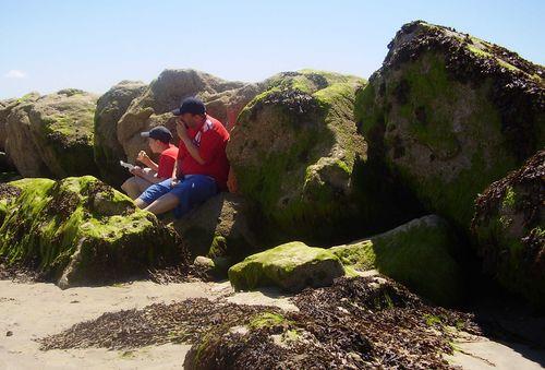 Picnic rocks web