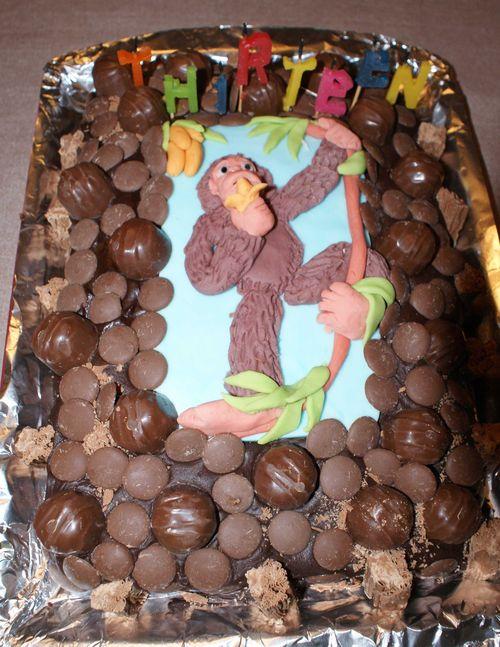Go ape cake 13 web