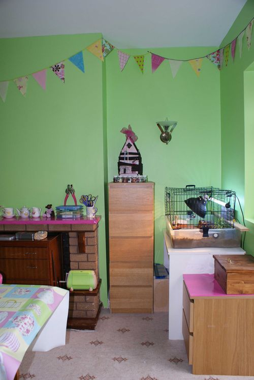 Craft room tortoise corner 2 web