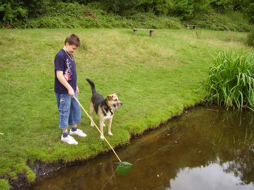 Fishing boy and rent a dog web
