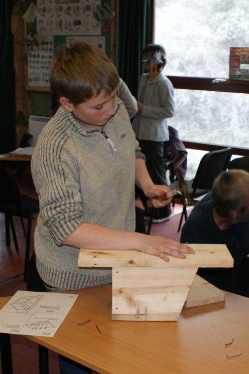 Robin bird box maker