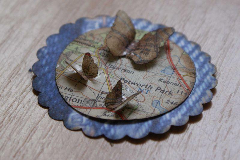 Map embellie aged butterflies web