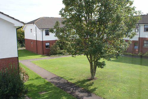 Courtyard view web