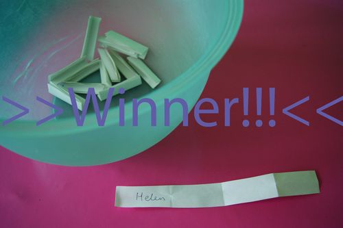 Crazy Chick winner Helen web