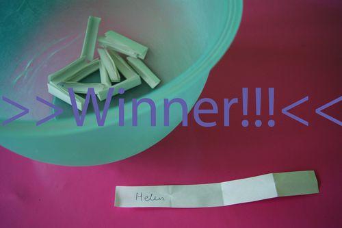 Crazy Chick winner Helen web