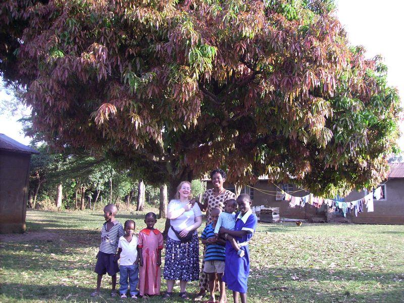 04b mango tree web