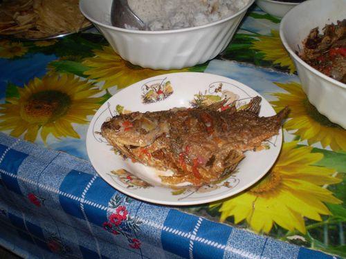 Farewell meal talapia 2  web