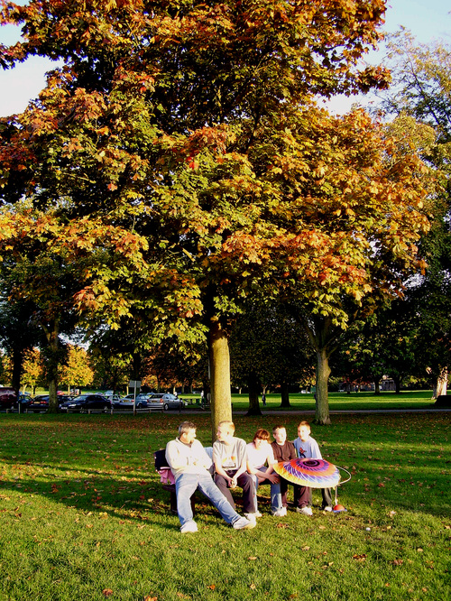 Colour_fixed_under_tree